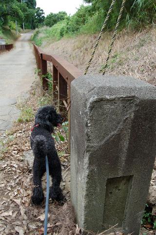 09橋の標柱.JPG