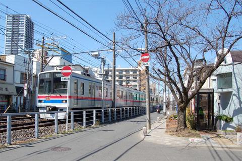 10京成と桜.JPG